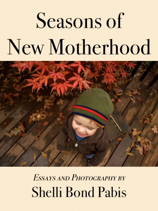 Seasons of New Motherhood 2