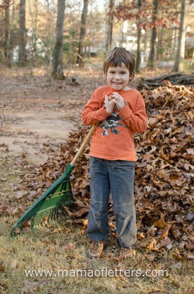 raking leaves-1