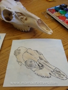 Some of my own work. Tried to draw and paint 8yo's deer skull.