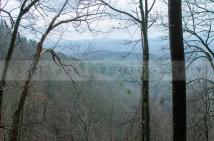 North Georgia Mts.