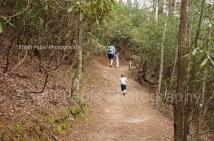 Unicoi State Park / Lake Loop Trail