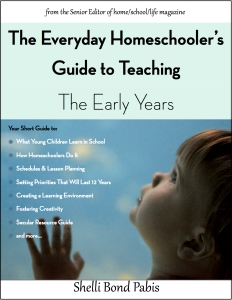 Everyday HSer Early Years Cover w border jpeg